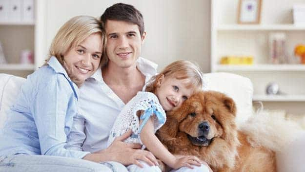 Wills & Trusts dog-young-family Direct Wills Barking and Dagenham
